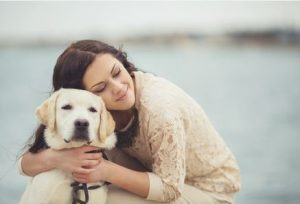 Dogs and Human Emotions