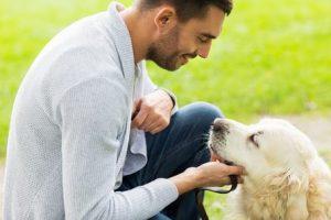 Necessities of Pet Care