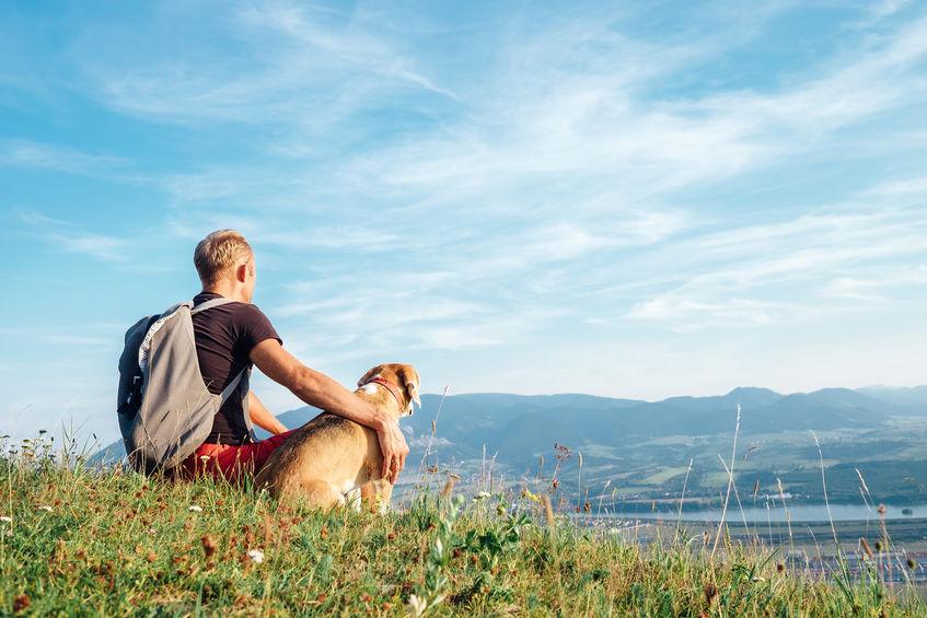 Fall Hike with Dog